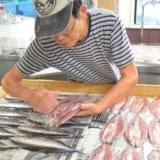 島原の地で作られるひもの工房「はま惣」の美味しい魚たち