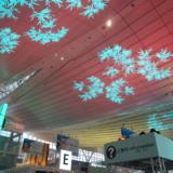 電飾ツリーが復活!「羽田 Sky illumination 2017」へ行きました