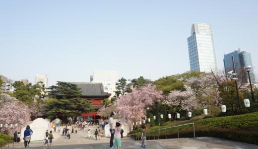 桜の舞い散る増上寺と後ろに東京タワー!門前町の賑わいを感じる地!