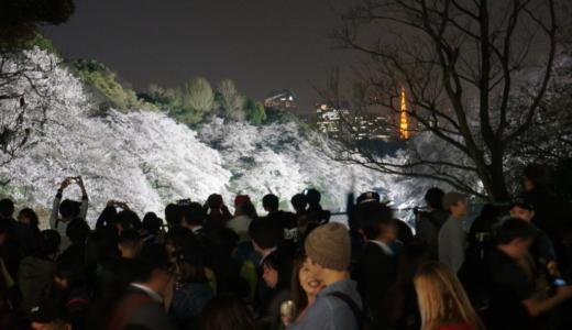 皇居沿いの桜の名所「千鳥ヶ淵」は東京タワーと桜のコラボが見れる!