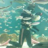 小規模で落ち着いた空間!サンピアザ水族館は新札幌にある駅直結の水族館