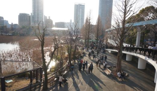 日本で最も多い入園者数!上野動物園は関東で唯一ジャイアントパンダに会える動物園