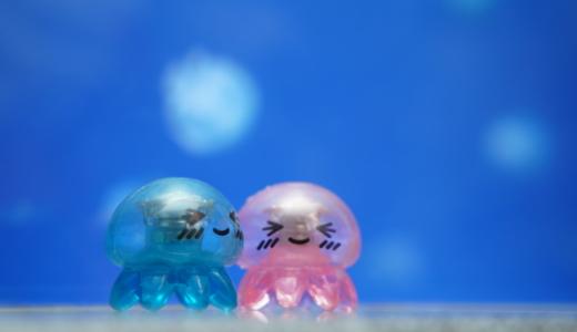 クラゲパンにクラゲカクテル!新江ノ島水族館のカフェコーナーでクラゲづくし