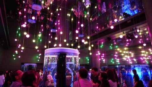 品川駅から徒歩5分プリンスホテル内!アクアパーク品川は光と映像の水族館
