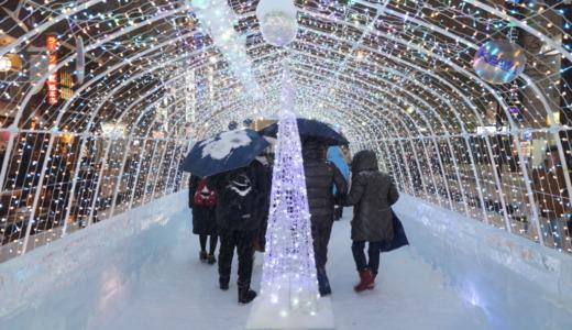 氷像が多数展示されている「すすきのICE WORLD 2020」会場レポート