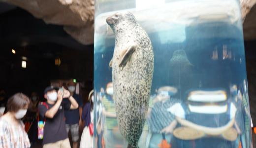 1周まわるのに約2時間!ホッキョクグマとペンギンが見どころの旭川市旭山動物園へ