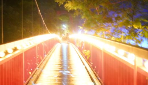 自然豊かな国立公園の夜間ライトアップイベント!NAKED演出の定山渓ネイチャールミナリエへ