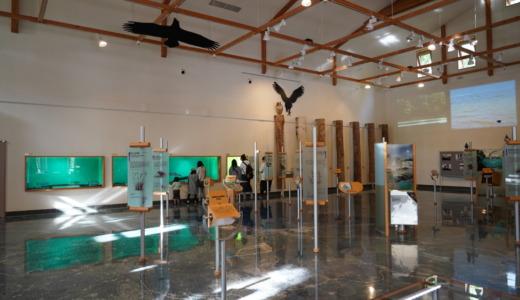 マリモも展示!阿寒湖畔エコミュージアムセンターで阿寒摩周国立公園の自然について学習する