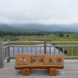 ヒグマやシカに遭遇することも!高架木道で安全に散策できる知床を代表する景色「知床五湖」へ
