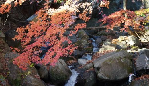 仙娥滝や円覚峰などの見どころ多数!山梨の紅葉スポット・特別名勝「昇仙峡」で秋の渓谷散策を楽しむ
