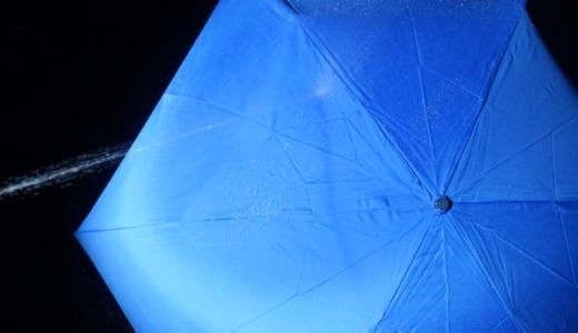 雨水を弾いて濡れない晴雨兼用傘!ムーンバット「フロータス超撥水折りたたみ傘」レビュー